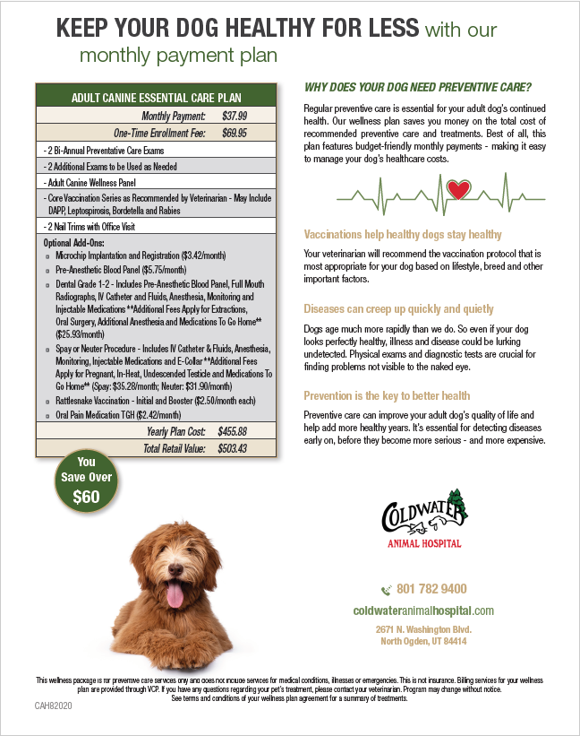 Adult Dog Wellness Plan